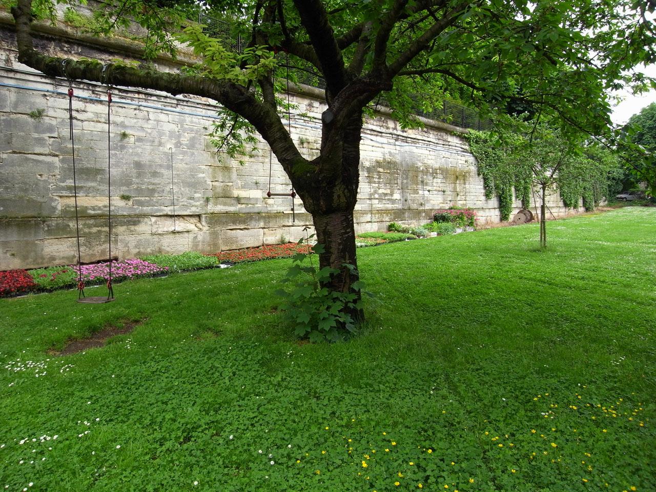 observatoire-cerisier
