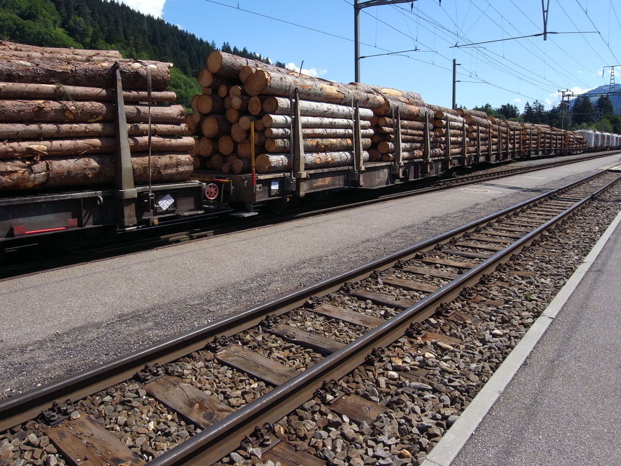 ilanz-train-timber