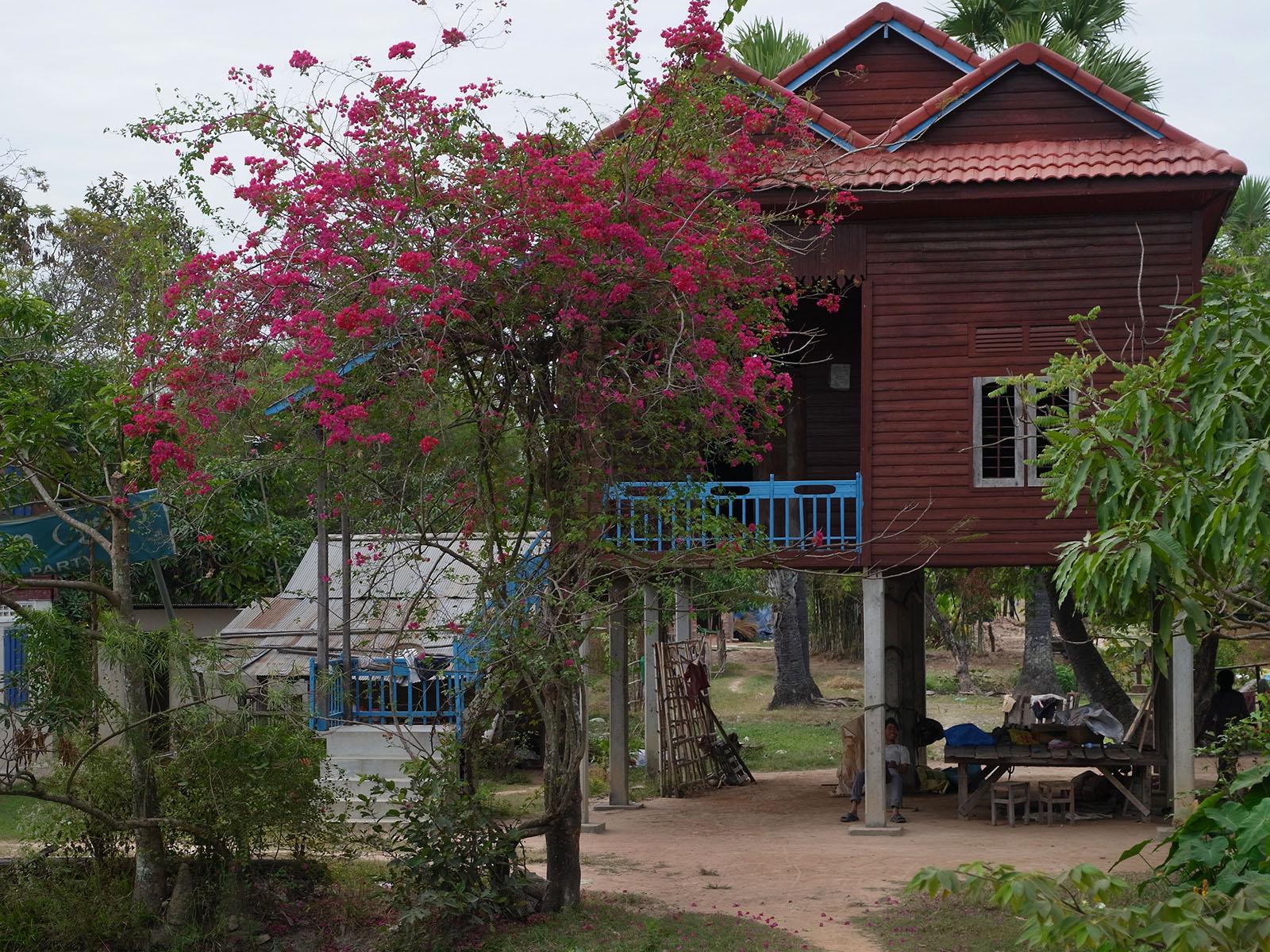 trois-toits-rampes-bleues-arbre-rouge