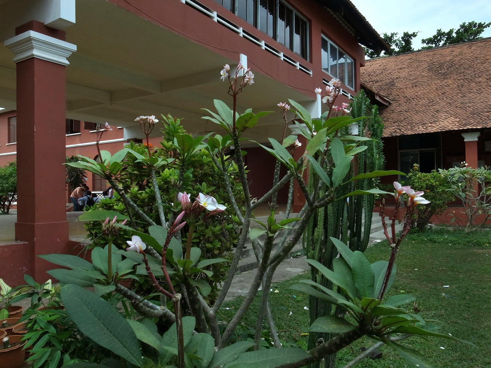 urba-plantes