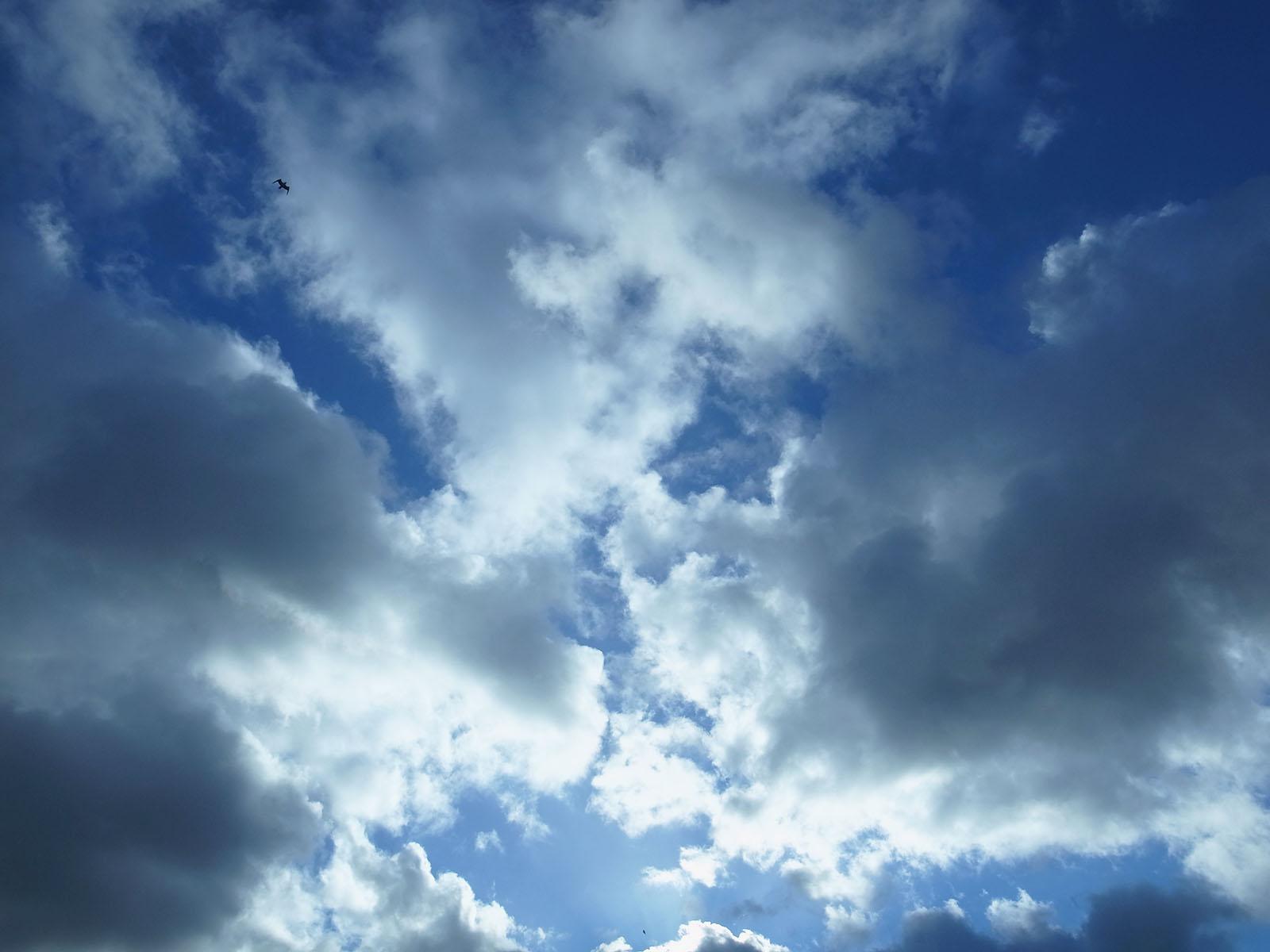 ciel-02-02-2013