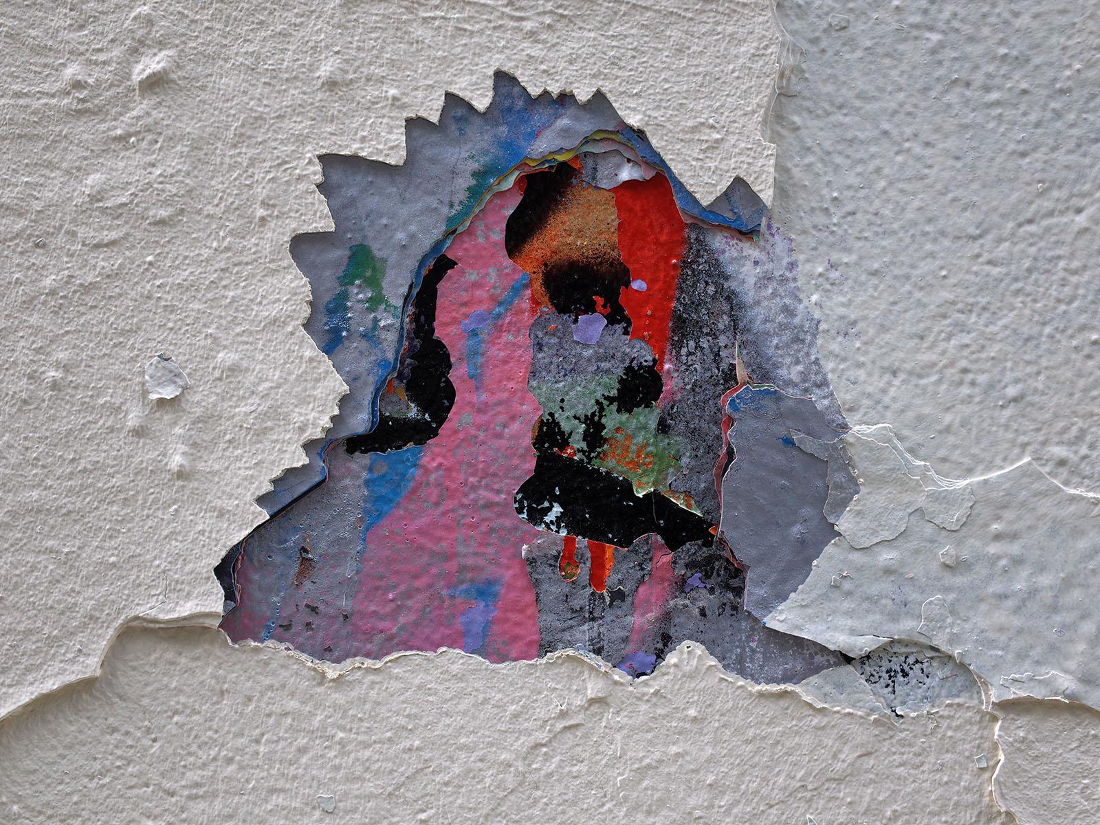 bouvier mur