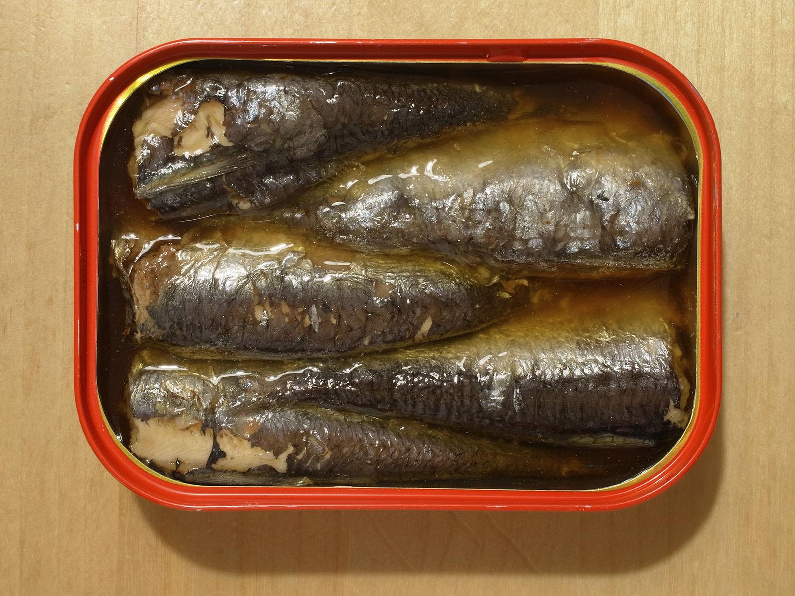 sardine boite
