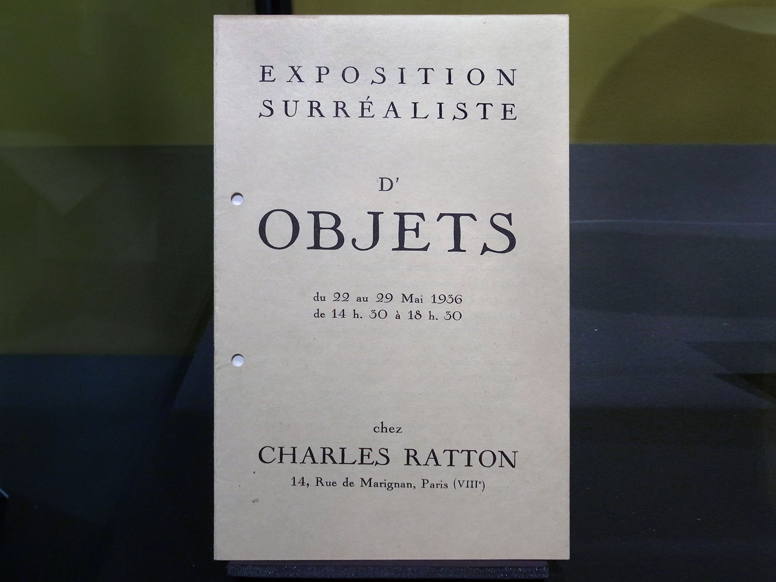 catalogue branly ratton