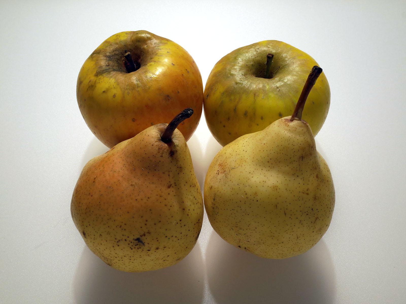 pommes-poires