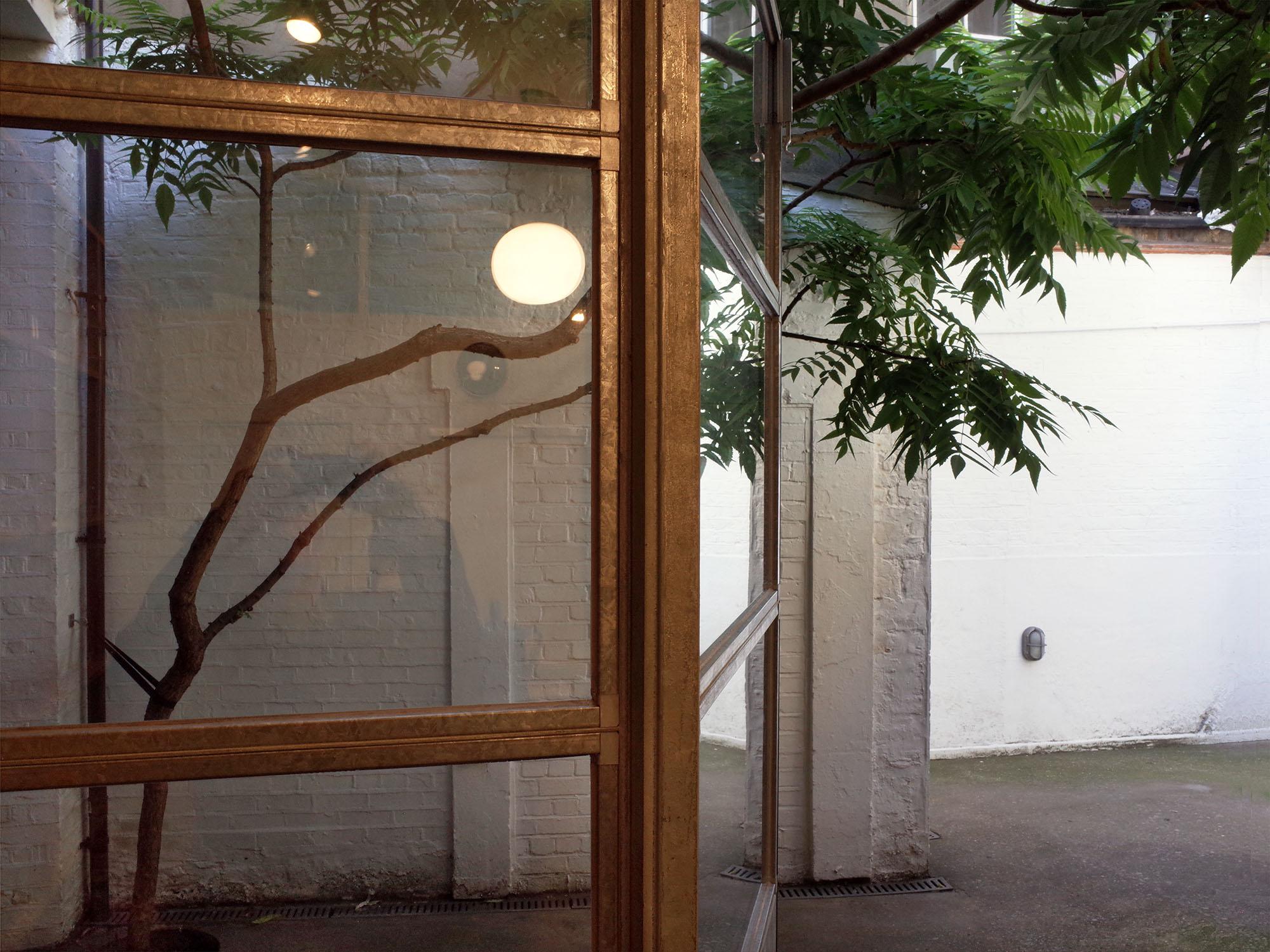 jasper-morrison-arbre