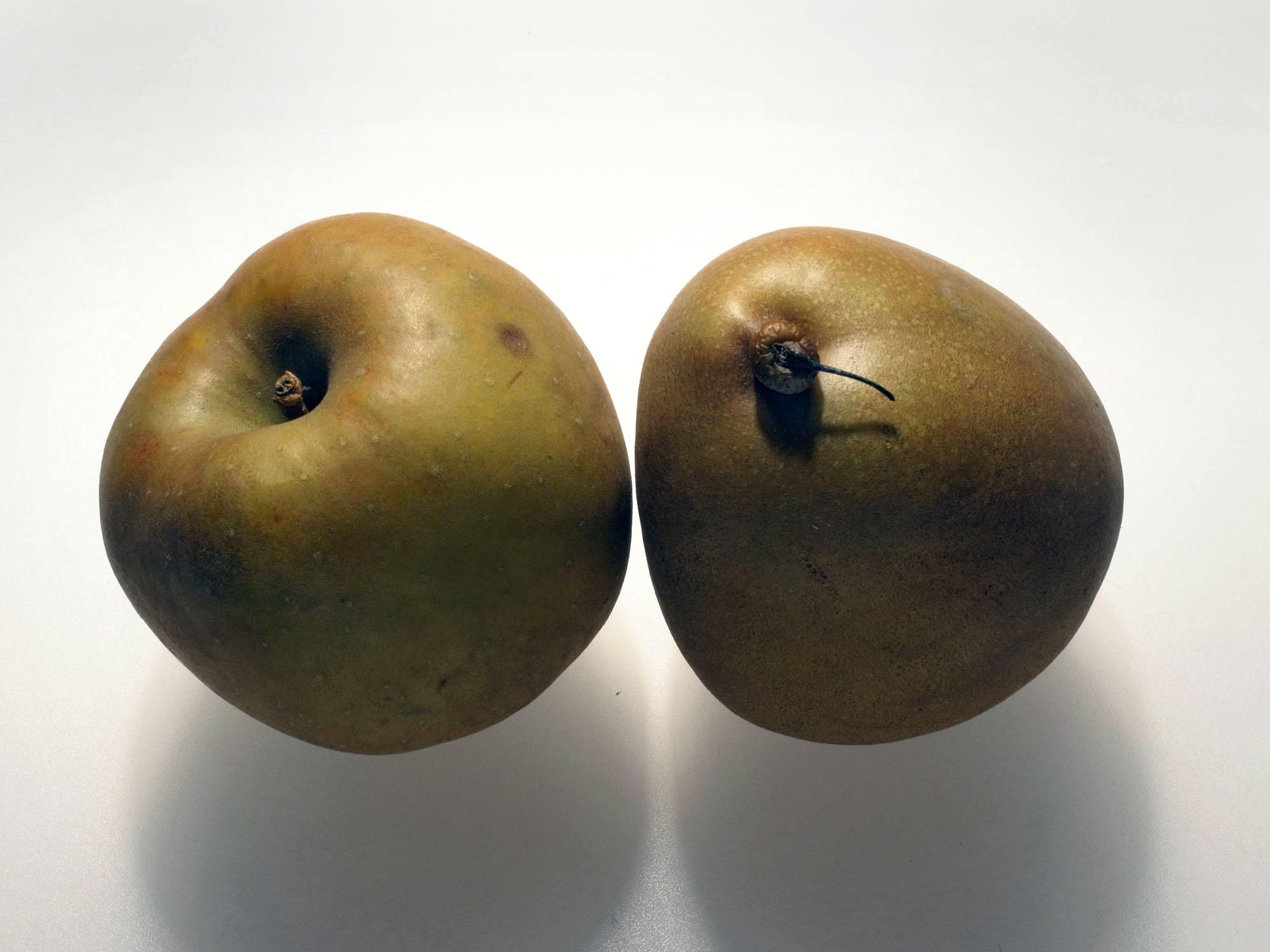 pomme poire bis 2015