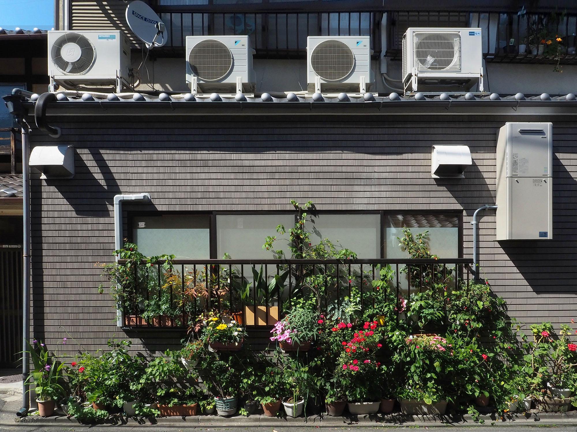 fleurs-kyoto