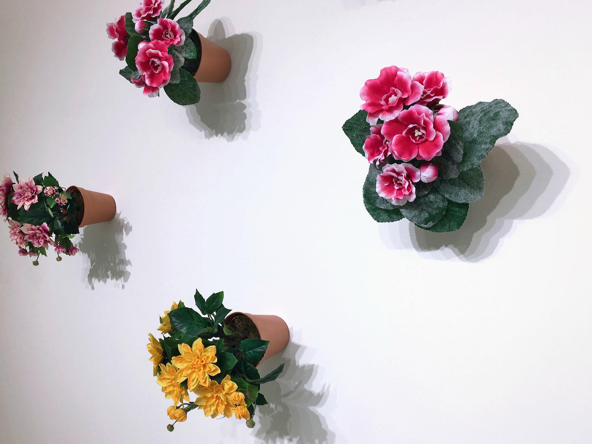 hpf-15-flowerpots-2016